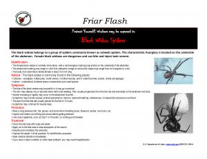 FF 2-17-14 black widow