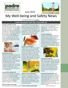 June 2015 Padre Associates Newsletter_Page_1